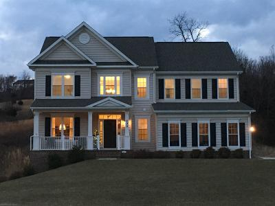 Blacksburg VA Single Family Home For Sale: $659,900