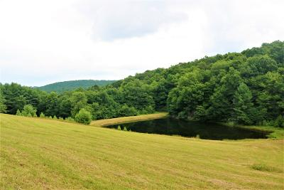 Floyd VA Residential Lots & Land For Sale: $380,000