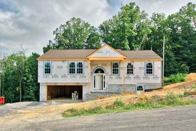 Montgomery County Single Family Home For Sale: 235 Robin Hood Drive
