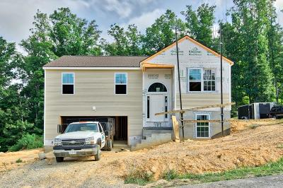 Montgomery County Single Family Home For Sale: 225 Robin Hood Drive