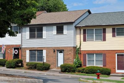 Christiansburg Condo/Townhouse For Sale: 139 Franklin Parke Court