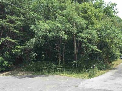 Pearisburg Residential Lots & Land For Sale: Tbd Lot 28 Deer Avenue