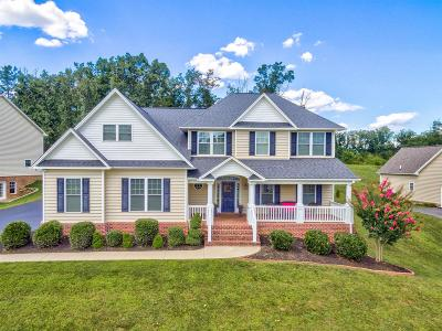 Salem VA Single Family Home For Sale: $439,950