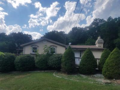 Narrows VA Single Family Home For Sale: $34,900