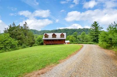 Pulaski County Single Family Home For Sale: 1321 Trail Hollow Road