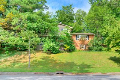 Radford Single Family Home For Sale: 1204 Milton Lane