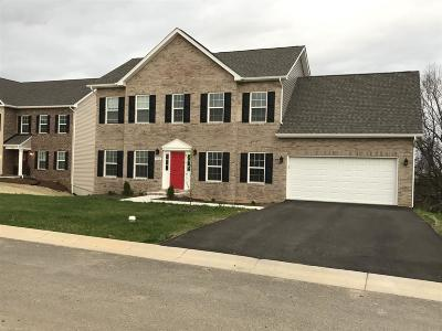 Christiansburg Single Family Home For Sale: 715 Keystone Drive