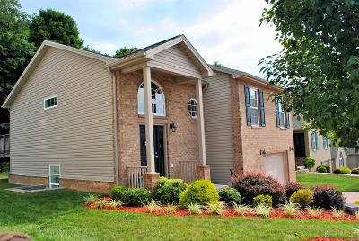 Christiansburg Single Family Home For Sale: 145 Alexa Lane