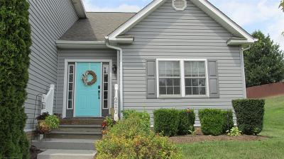 Christiansburg Rental For Rent: 210 Meadow Drive