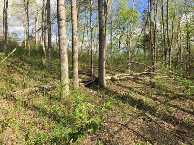 Christiansburg Residential Lots & Land For Sale: Indigo Road