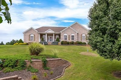 Christiansburg Single Family Home For Sale: 3800 Divine Drive