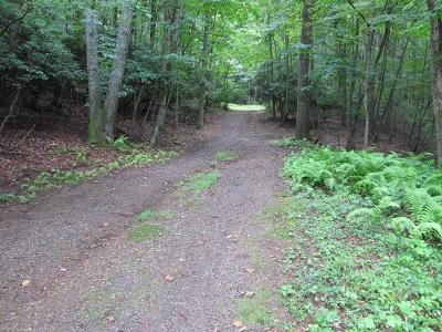 Floyd VA Residential Lots & Land For Sale: $49,000