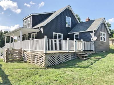 Giles County Single Family Home For Sale: 372 Staffordsville Hill Road