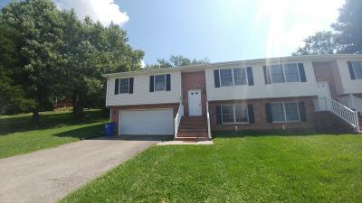 Christiansburg Condo/Townhouse For Sale: 260 Wades Lane