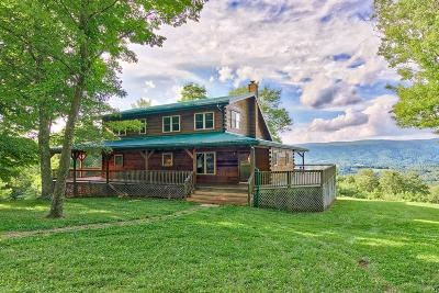 Giles County Single Family Home For Sale: 302 Autumn View Lane