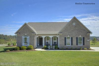 Radford Single Family Home For Sale: 6233 Heron's Landing Drive