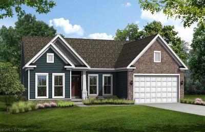 Montgomery County Single Family Home For Sale: 2262 Scenic Ridge Circle