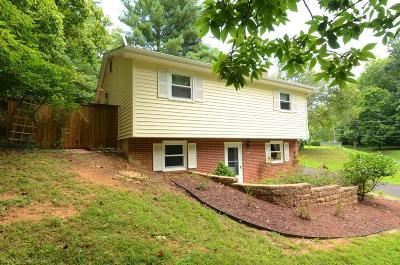 Radford Single Family Home For Sale: 601 Forest Avenue