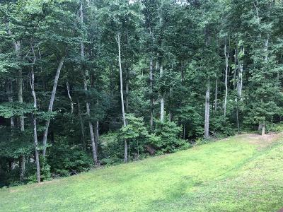 Pearisburg Residential Lots & Land For Sale: E White Pine Road