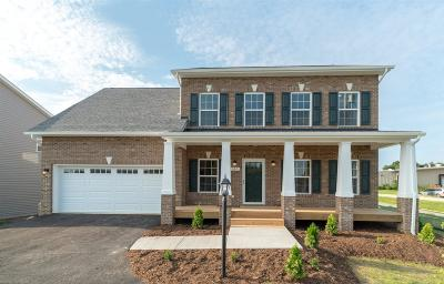 Christiansburg Single Family Home For Sale: 505 NW Cambria Drive