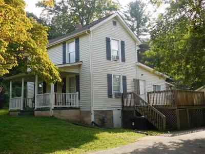 Radford Single Family Home For Sale: 116 Hammett Avenue
