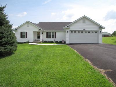 Wythe County Single Family Home For Sale: 176 Pleasant Pine Drive