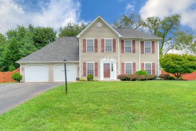 Christiansburg Single Family Home For Sale: 625 Cameo Court