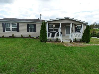 Wythe County Single Family Home For Sale: 139 Indian Circle