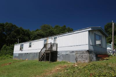Floyd VA Single Family Home For Sale: $225,000