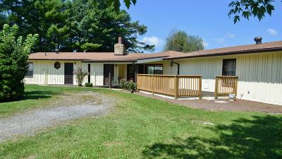 Wythe County Single Family Home For Sale: 1771 Castleton Road
