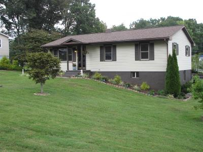 Wythe County Single Family Home For Sale: 317 Fox Fire Road