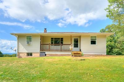 Radford Single Family Home For Sale: 256 McCormick Road