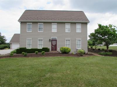 Christiansburg Single Family Home For Sale: 4410 Fairview Drive