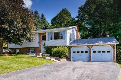 Montgomery County Single Family Home Back On Market: 295 Tanglewood Drive
