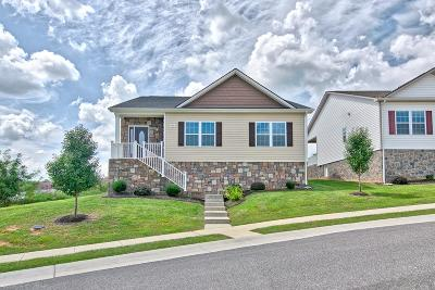 Christiansburg Single Family Home For Sale: 1824 Cub Circle