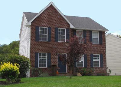 Blacksburg Single Family Home For Sale: 1611 Bold Springs Circle