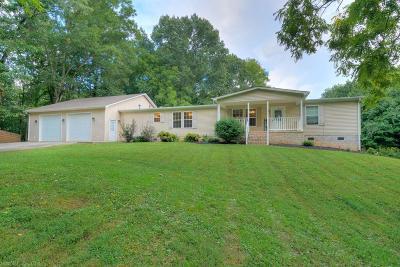 Giles County Single Family Home For Sale: 195 Black Walnut Drive