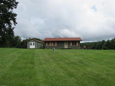 Pulaski County Single Family Home For Sale: 4399 Irish Mountain Road