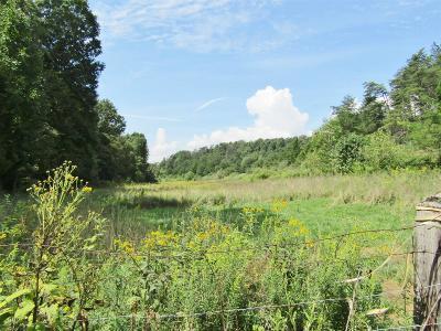 Pearisburg Residential Lots & Land For Sale: Springdale Road