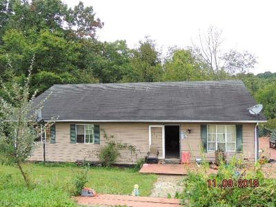 Giles County Single Family Home For Sale: 542 Staffordsville Road