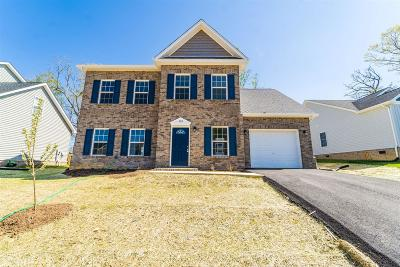 Blacksburg Single Family Home For Sale: 117 Oak Meadow Lane