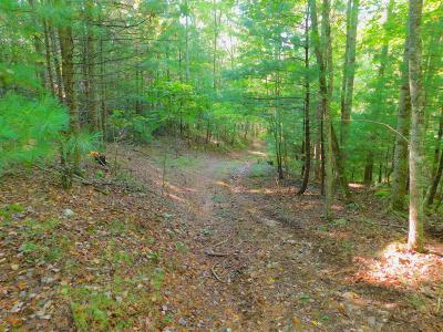 Radford VA Residential Lots & Land For Sale: $132,500
