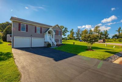 Wythe County Single Family Home For Sale: 415 Pleasant View Drive