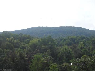 Narrows Residential Lots & Land For Sale: 375 Robertson Mtn. Road