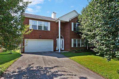 Christiansburg Condo/Townhouse For Sale: 585 Arrowhead Trail