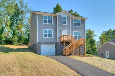 Christiansburg Single Family Home For Sale: 1049 St Clair Lane