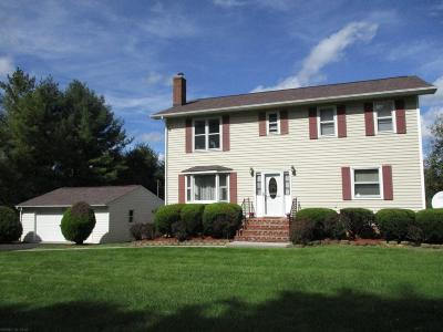 Blacksburg Single Family Home For Sale: 1412 Bishop Road