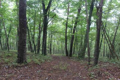 Montgomery County Residential Lots & Land For Sale: Bradshaw Road