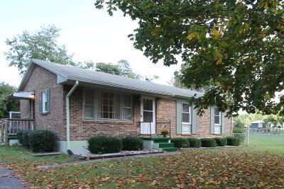 Radford Single Family Home For Sale: 113 Kirkwood Drive