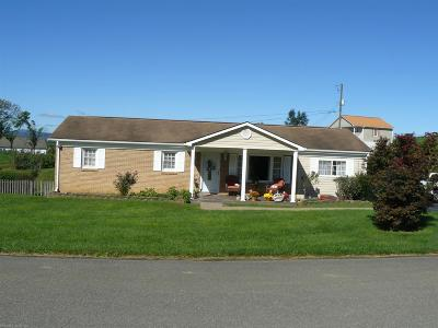 Pulaski VA Single Family Home For Sale: $144,900